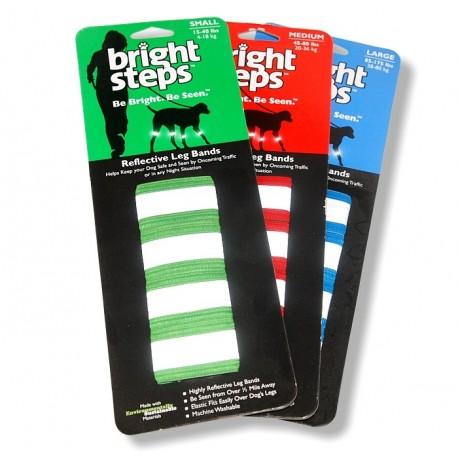 Fab4Pets® Bright Steps™