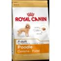 Royal Canin® Poodle Adult