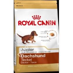 Royal Canin® Dachshund Junior