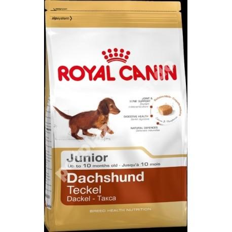 Royal Canin® Dachshund Junior Alimento Seco Para Perros