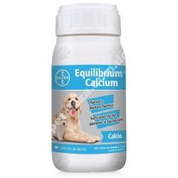 Equilibrium Calcium