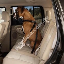 Cruising Companion® Car Harness