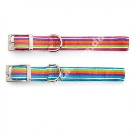 Zack and Zoey® Brite Stripe Dog Collar