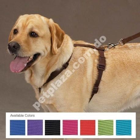 Zack & Zoey® Nylon Dog Harness