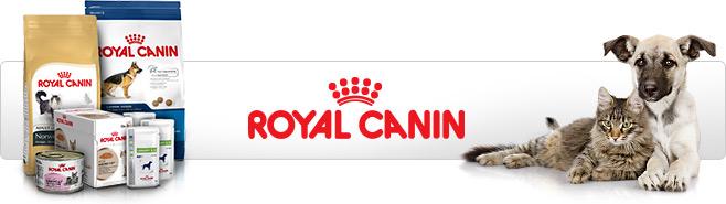 Royal Canin Header